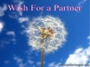 July 2013 Connective Goal Setting Session – Wish For a Partner
